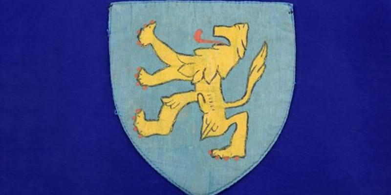 De Hollandse leeuw op de officiële kleding